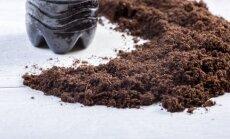"""<span style=""""color: #ff0000;"""">Naudinga:</span> kaip panaudoti kavos tirščius sodininkystėje"""