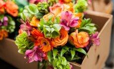 8 patarimai, kurie padės išlaikyti gėlių puokštes ilgiau