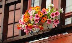 Kaip dekoruoti balkonus butuose?