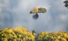 Arkadijos nacionalinis parkas, Meino valstija (JAV)