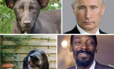 V. Putinas, Snoop Dogg