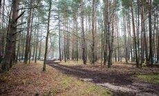 Valstybinis miškas Turniškėse
