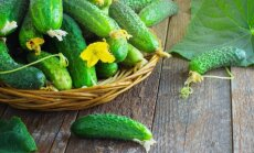 3 daržovės, kurios pasitarnaus ne tik pietų stalui, bet ir sveikatai