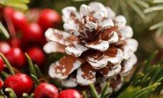Kankorėžiai kaip kalėdinės dekoracijos