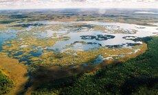Žuvinto biosferos rezervate saugomas didžiausias Lietuvos pelkynas, apimantis 6940 ha