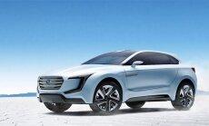 Vis daugiau automobilių taps elektriniais (asociatyvi nuotr.)