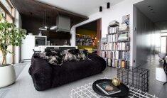 Dizainerio svetainės centre– transformuojama sofa. Ažūrinis staliukas neužgriozdina erdvės, ant jo nesikaupia dulkės