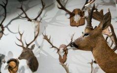 Medžiotojai tampa sąmoningesni?