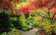 Gamtos stiliaus sodas: pagrindiniai principai