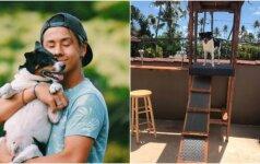 Kūrybingas vyras išpildė šuns svajonę: keturkojis žvalgas stebi aplinką nuo savo bokštelio