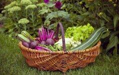 Daržovių TOP 5: sveikesnis pasirinkimas nei iš užsienio atkeliavę pomidorai Receptas su šakniavaisiais