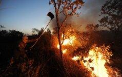 Lietuvoje numatytos baudos ne tik už žolės deginimą, bet ir nepranešimą