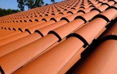 Kokios stogo dangos nepataria pirkti patys pardavėjai?