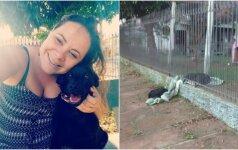 Šeimininkę nustebino kalytės poelgis: antklode pasidalino su benamiu šunimi