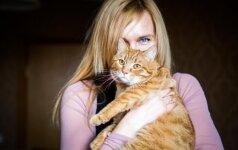 Į gatvę išmestas katinas Gintaras vilnietės namuose tapo tikru fotomodeliu