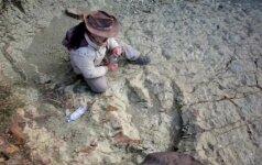 Bolivijoje rasti gigantiški dinozauro pėdsakai
