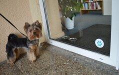 Lietuvoje duris atvėrė pirmosios bibliotekos, draugiškos gyvūnams