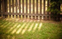 Taisyklės, kurias būtina žinoti susiruošus tverti tvorą