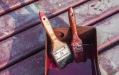 Dažymo įrankiai: teptukų ir volelių valymas po darbo