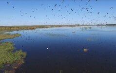 Išskirtinio grožio Lietuvos vieta: pažvelkime į ją iš paukščio skrydžio