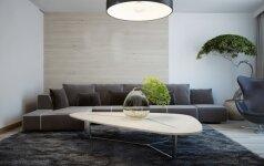 Holistinio interjero dizainerės patarimai, kaip fengšui praktiką pritaikyti kuriant namus