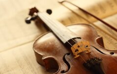 Moteris įtariama sudaužiusi buvusio sutuoktinio 54 smuikus