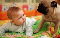 Milijoną prajuokinęs video: kūdikis ir šuo VIDEO