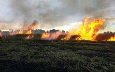 Kova su žolės degintojais: aplinkosaugininkai vardija savo ginklus