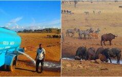 Auksinė vyro širdis: kasdien gabena laukiniams gyvūnams vandenį, be kurio jie neišgyventų