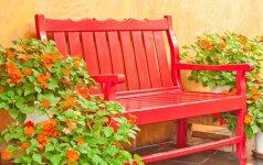 Kaip sode susikurti romantišką salelę