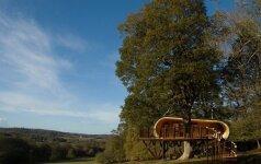 Modernus namas medyje su visais patogumais