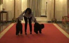 Paskutinis M. Obamos pasivaikščiojimas Baltuosiuose rūmuose su mylimais šuniukais