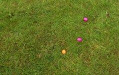 Kitokios Velykos: kiaušinių mėtymo varžybos Horhauzeno mieste