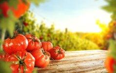 Ką būtina nuveikti darže liepos mėnesį