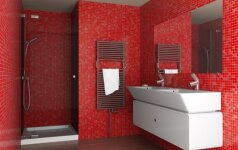 Ši gudrybė pravers nemėgstantiems tvarkyti vonios kambario