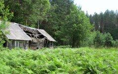 V.Vingrienė. Jau galime ruoštis miškams su prabangiomis rezidencijomis ir daugiabučių kvartalais