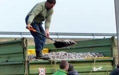 Politikų dilema: ar nerti apynasrį žvejams verslininkams?