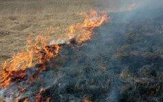 Aplinkosaugininkai įspėja - deginti neverta