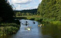 Atostogauk Lietuvoje: lobiai, kuriuos turi pamatyti
