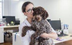 Skrydžių bendrovė darbuotojų nevaržo: nuo streso jie ginasi šunimis