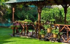 3 poilsio kampeliai: terasa, pavėsinė ar prie gėlyno