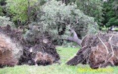 Per škvalą Lietuvoje žuvo keturi žmonės, Trakų rajone šeši namai liko be stogų
