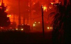 Dėl miškų gaisrų Čilėje paskelbta katastrofiška padėtis
