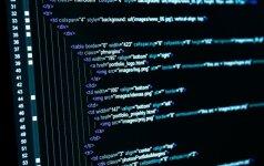 Programavimo ekspertai iš 40 pasaulio šalių rinksis Vilniuje