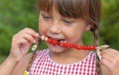 Kurie serbentai vertingiausi, ką skystina agrastai ir kodėl žemuogės gerina apetitą?