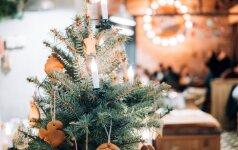 Kalėdinė eglutė: ekspertės patarimai, kaip išsirinkti tokią, kuri džiugintų, o ne keltų rūpesčius