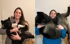 Tokių staigių pokyčių pora nesitikėjo: jų šuniukas auga lyg ant mielių