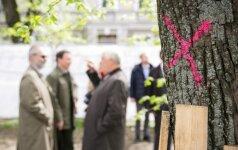 Lukiškių aikštės projektą išdėjo į šuns dienas: ginčo objektu tapo liepos