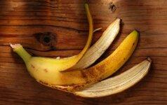 Bananai gali padėti diagnozuoti ir gydyti vėžį