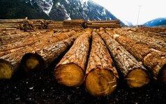 Graikai kerta miškus, kad nesušaltų